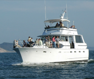 Motor yacht Chris Craft Roamer 55 available for charter in Saugatuck