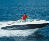 Yacht Sea Ray 240 Sundancer for hire in Petrcane