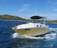 Yacht Sea Ray 275 available for charter in Tribunj Harbour