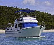 Motor yacht Sundecker 36 Cruiser available for charter in Abel Point Marina
