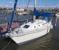 Segelyacht Pearson 33 Mark 2 Yachtcharter in Barrington