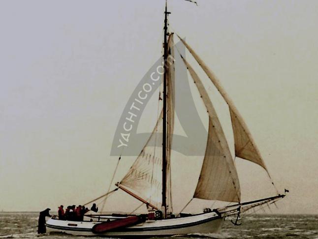Witte Walrus Segelyacht Charter Harlingen